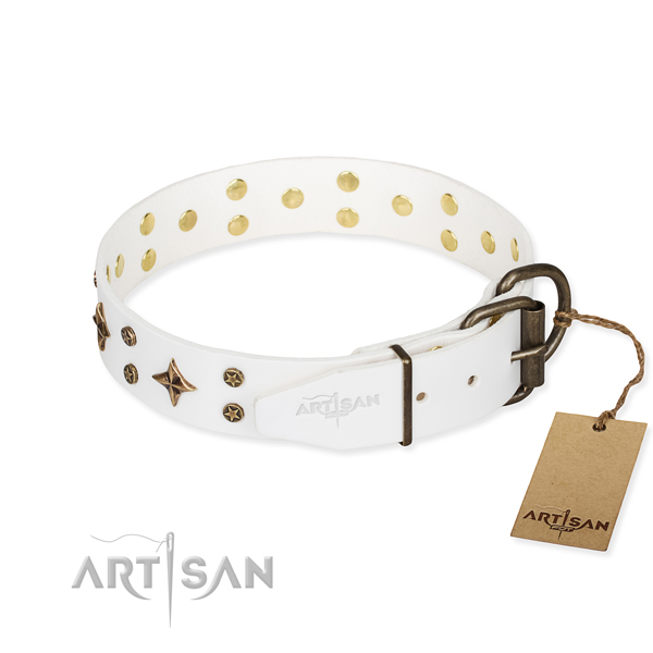 Stylish walking full grain genuine leather collar with embellishments for your pet