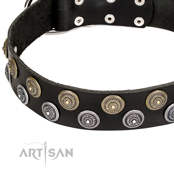 Natural genuine leather dog collar with stunning embellishments