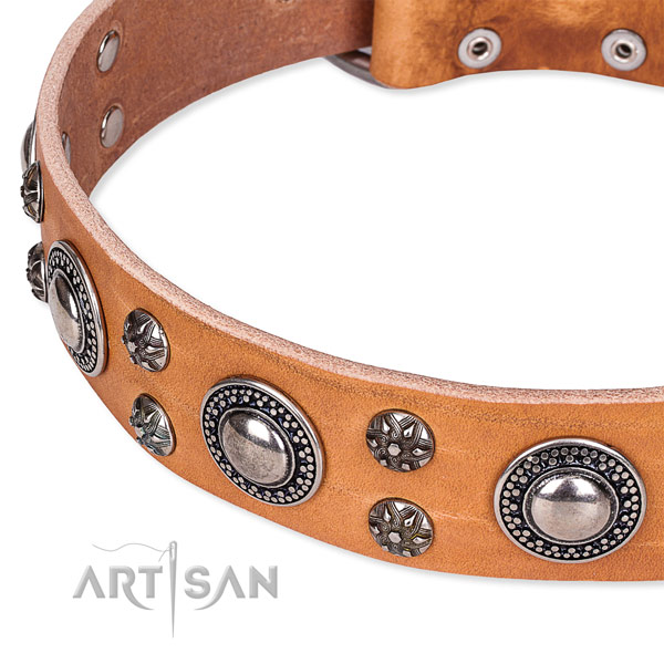 Daily walking leather collar with reliable buckle and D-ring