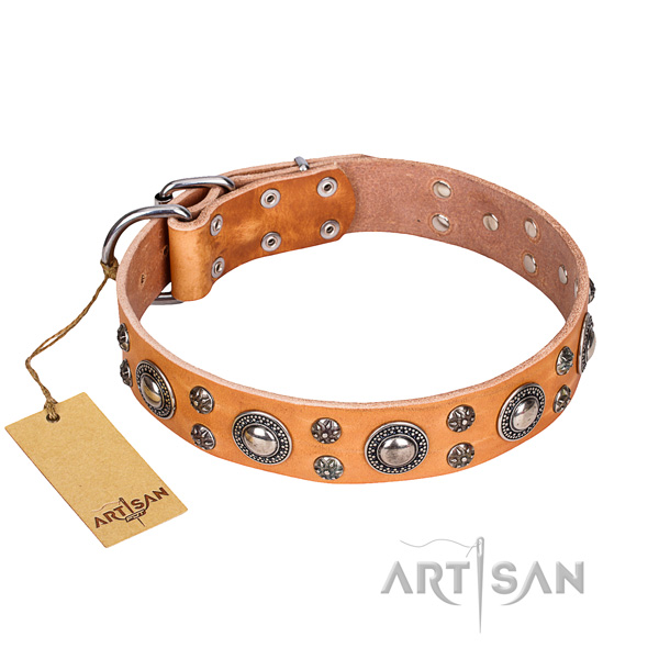 Unusual natural genuine leather dog collar for daily walking