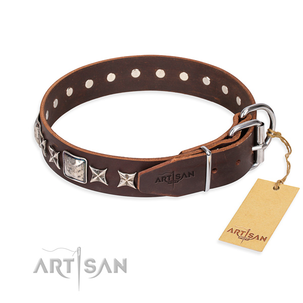 Daily walking genuine leather collar with embellishments for your four-legged friend