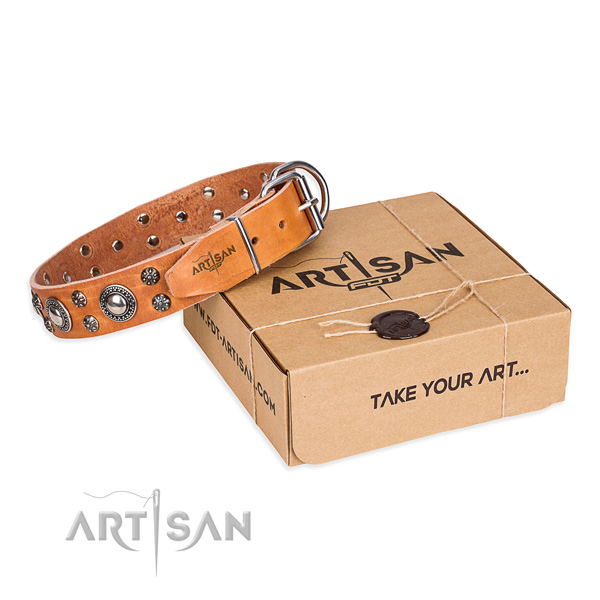 Top notch natural genuine leather dog collar for walking