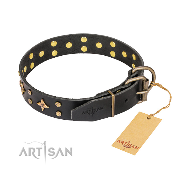 Everyday walking leather collar with decorations for your doggie