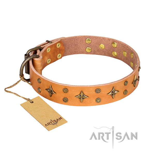 Unique genuine leather dog collar for stylish walking