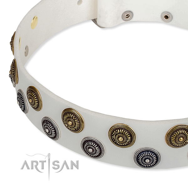 Genuine leather dog collar with exquisite studs
