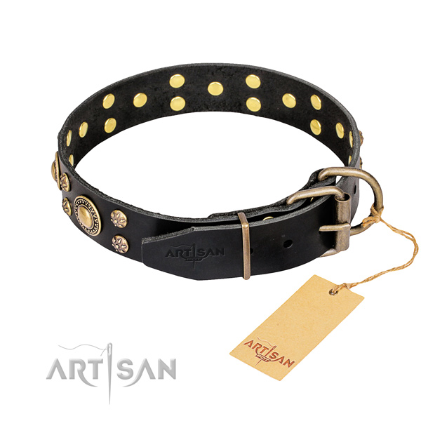 Everyday walking full grain leather collar with decorations for your doggie