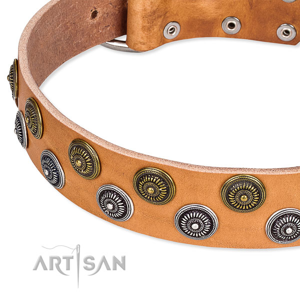 Genuine leather dog collar with unusual adornments