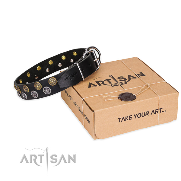 Natural genuine leather dog collar with adornments for daily walking