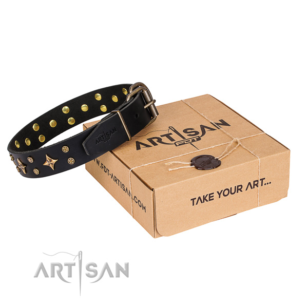 Embellished full grain natural leather dog collar for daily use