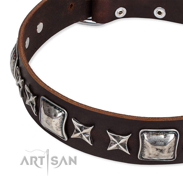 Full grain leather dog collar with studs for walking