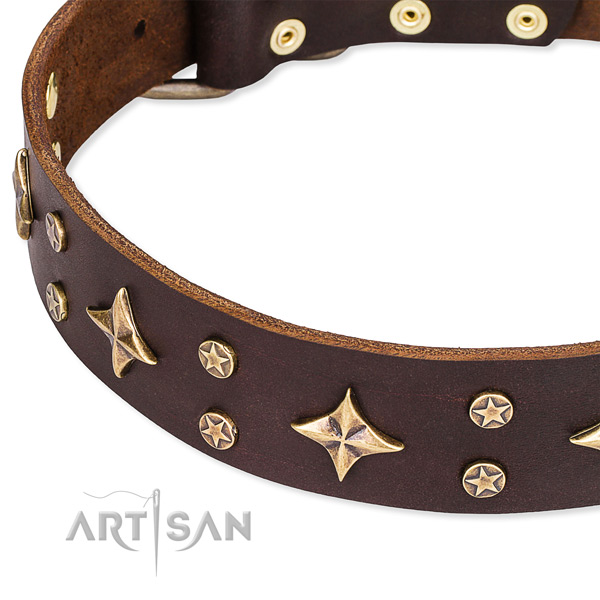 Full grain genuine leather dog collar with top notch adornments
