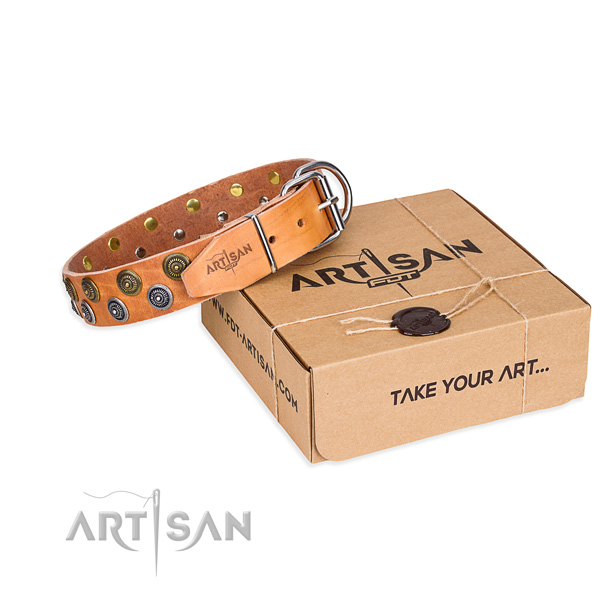 Full grain genuine leather dog collar with studs for daily walking