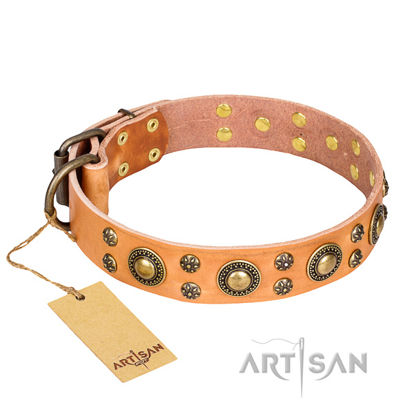 Remarkable leather dog collar for walking