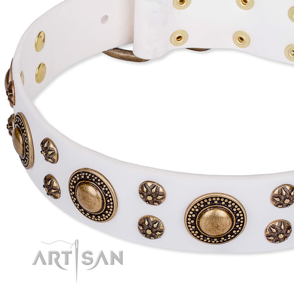 Natural genuine leather dog collar with awesome studs