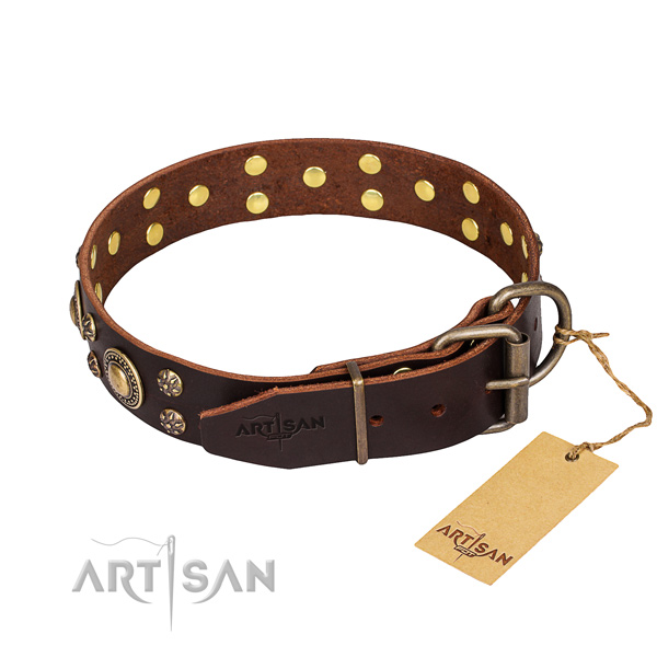 Daily use genuine leather collar with studs for your doggie