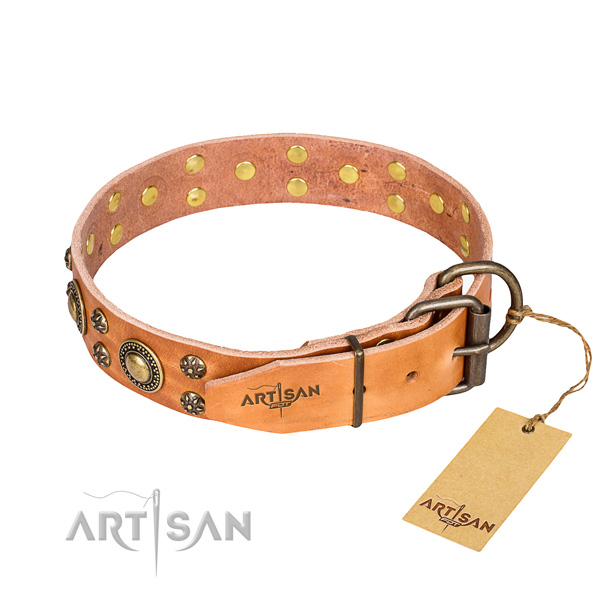 Daily use full grain genuine leather collar with studs for your canine