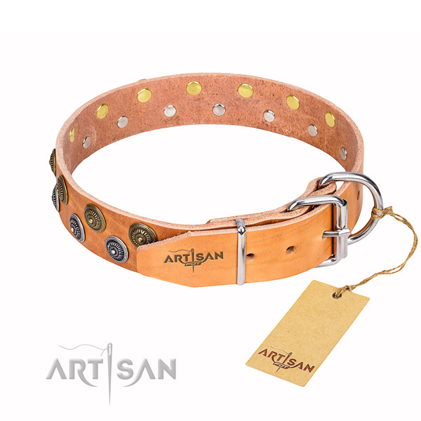 Unusual genuine leather dog collar for daily use