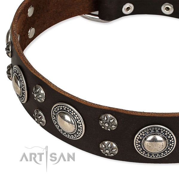 Snugly fitted leather dog collar with resistant to tear and wear durable buckle and D-ring