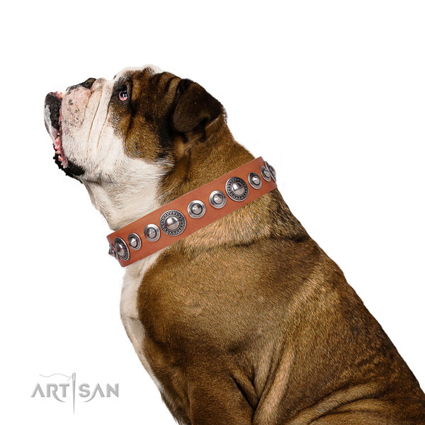 Inimitable embellished genuine leather dog collar for handy use