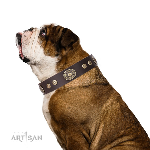 Inimitable studded natural leather dog collar for handy use