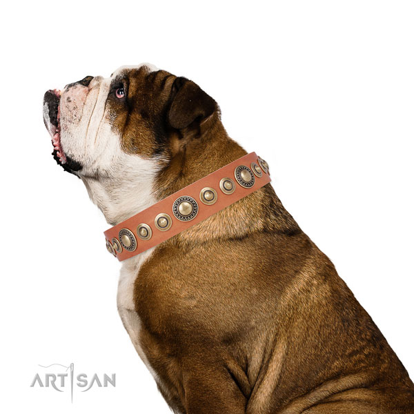 Corrosion proof buckle and D-ring on leather dog collar for stylish walks
