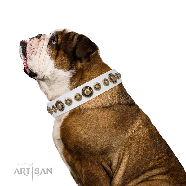 Rust resistant buckle and D-ring on genuine leather dog collar for walking