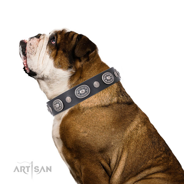 Durable buckle and D-ring on full grain leather dog collar for stylish walks