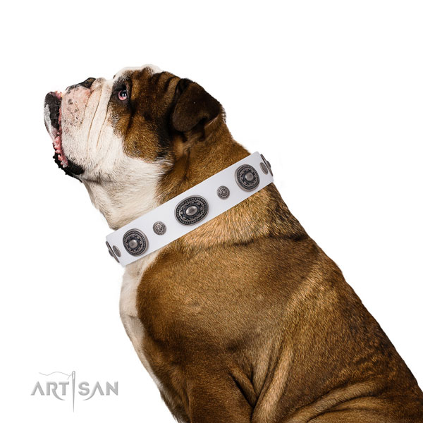 Natural leather dog collar with strong buckle and D-ring for handy use