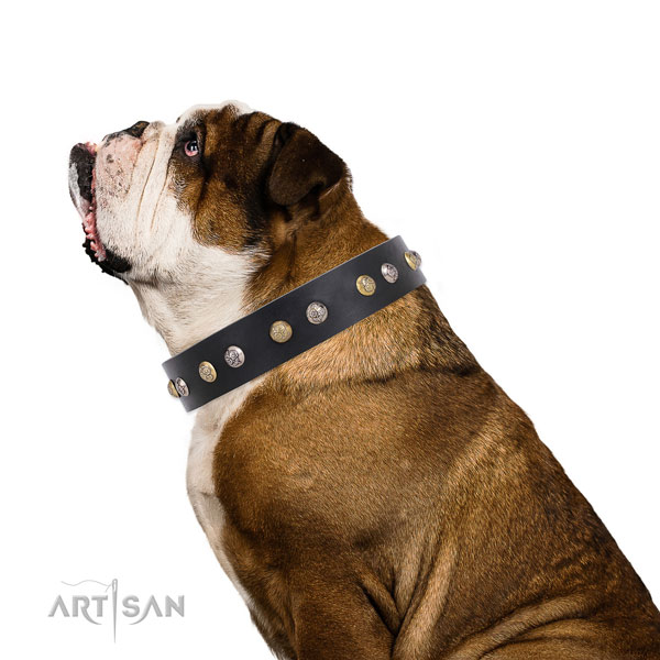 Leather dog collar with reliable buckle and D-ring for easy wearing