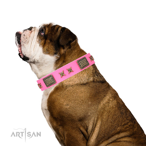Impressive studs on daily use natural genuine leather dog collar