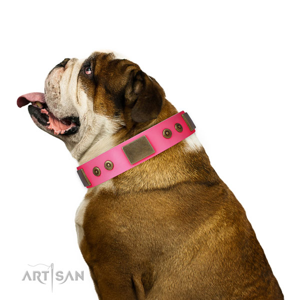 Fashionable natural genuine leather collar for your lovely pet