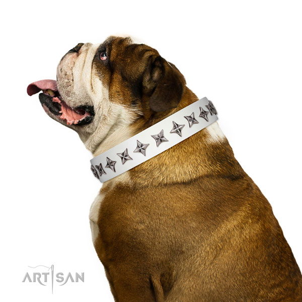 High quality full grain leather dog collar with amazing embellishments