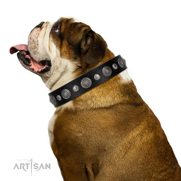 Leather collar with strong D-ring for your lovely doggie
