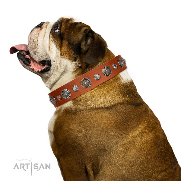 Studded leather dog collar with corrosion resistant traditional buckle
