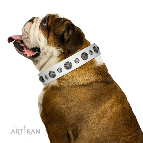 Easy wearing leather dog collar with corrosion proof traditional buckle