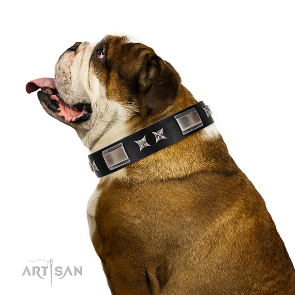 Easy wearing top rate leather dog collar with adornments
