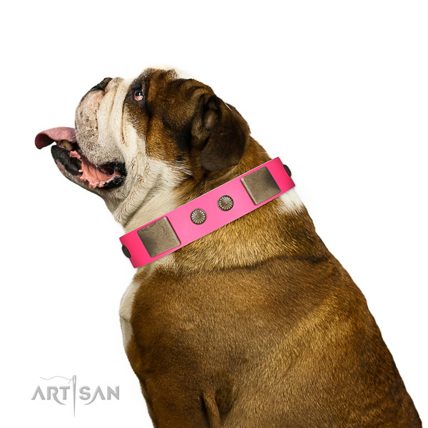 Strong D-ring on leather dog collar for stylish walking
