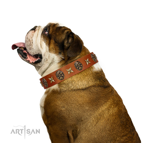 Exceptional full grain natural leather dog collar with decorations
