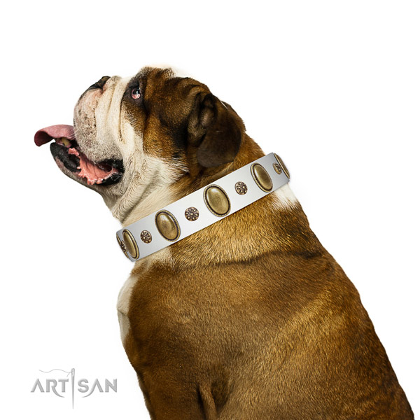 Easy wearing top rate genuine leather dog collar with decorations