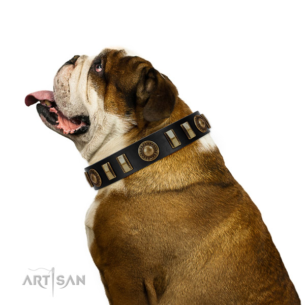 Top rate natural leather dog collar with rust resistant traditional buckle