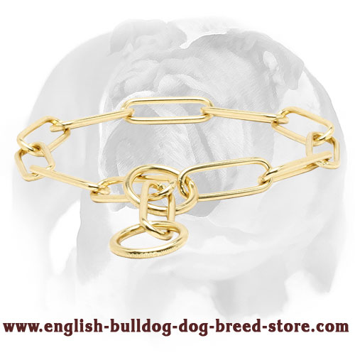Brass Fur Saver English Bulldog Collar