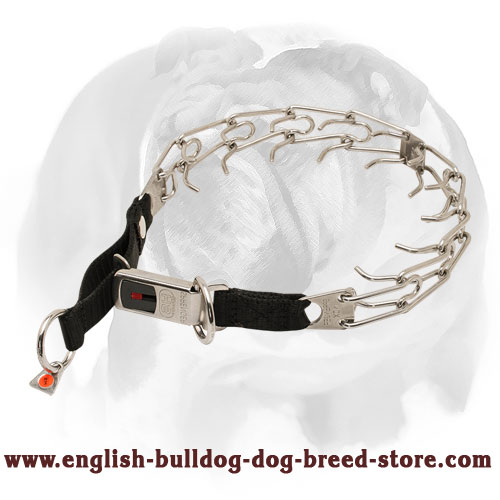 Herm Sprenger English Bulldog Collar with Nylon Loop