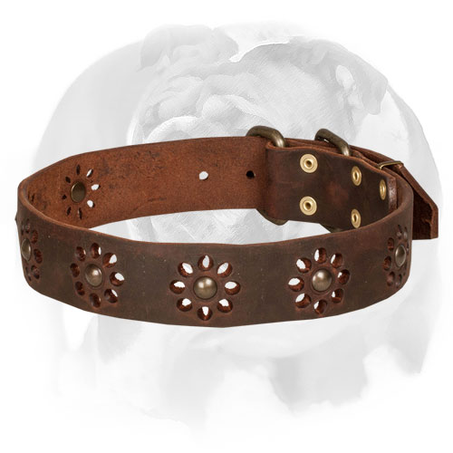 English Bulldog Leather Dog Collar With Unique Flower Design
