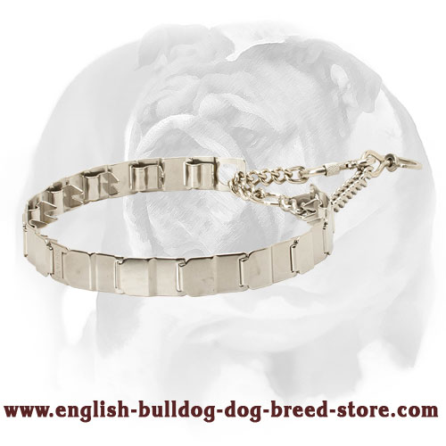 English Bulldog Durable Pinch Collar