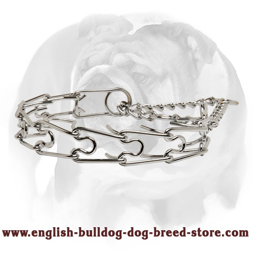 Durable Dog Collar for English Bulldog