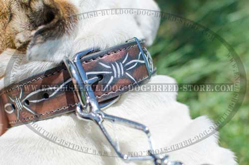 Best choice leather dog collar for English Bulldog breed