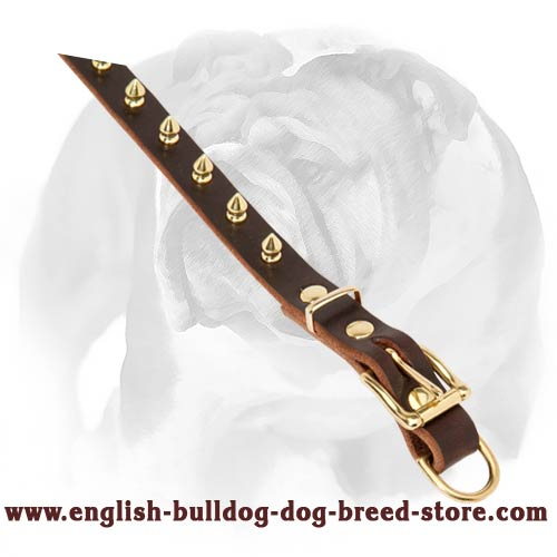 Best-Selling Spiked Leather Dog Collar made for English Bulldog breed