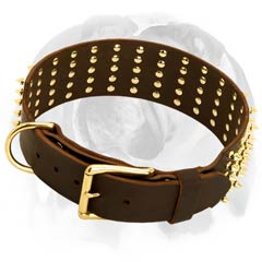 English Bulldog collar with rust-proof D-ring and solid metal buckle