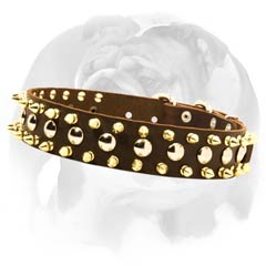 English-Bulldog-breed-collar-with-shiny-brass-spikes-and-fantastic-nickel-studs-small.jpg