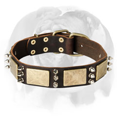 Wonderfull and Durable leather dog colllar